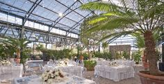 The Planterra Conservatory in west bloomfield, Michigan. Beautiful site for wedding ceremony/reception.