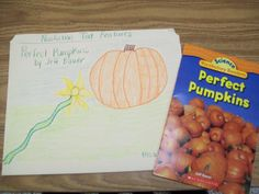 Ms. Winston's Blog: Nonfiction File Folder Project