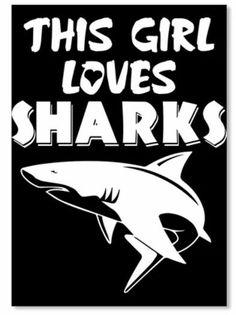 Love them! All About Sharks, Save The Sharks, Shark Bait, Megalodon, Great White Shark, Marine Biology, Shark Week, Baby Shark, Spirit Animal