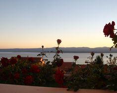 Mediterranean garden in Bol, Croatia