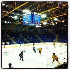 TD Bank Sports Center, Quinnipiac Vs. Brown Part 58