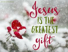 The greatest gift: Jesus. Christmas Blessings, Christmas Greetings, Christmas Quotes Jesus, Merry Christmas, Scripture Quotes, Faith Quotes, Scriptures, Church Signs, True Meaning Of Christmas