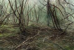 Bett Gallery Hobart - Nicholas Blowers - Leatherwood Debris