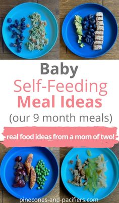 Our 9 month old meals great for self-feeding or baby-led weaning. If your baby is on purees these are great options for beginner eaters too! #babyledweaning #babyledweaningfirstfood #babyledweaningmeals #babyledweaningfood #selffeeding #selffeedingbaby Baby Self Feeding, Baby Feeding Schedule, Healthy Toddler Meals, Toddler Snacks, St Food, Solids For Baby, Baby On A Budget, 9 Month Olds, Baby Led Weaning