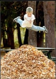 """Jumping in leaves as soon as you finished raking them into a pile! Interesting to note that this was apparently more of a northern vs. southern ritual. A friend of mine from the south said they would never do that because there might be """"critters"""" in the pile."""
