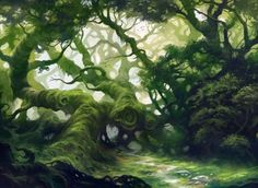 Forest by Andreas Rocha