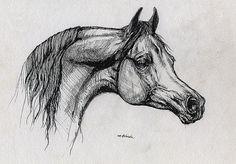 Bay arabian horse original pen drawing by AngelHorses on Etsy, £45.00