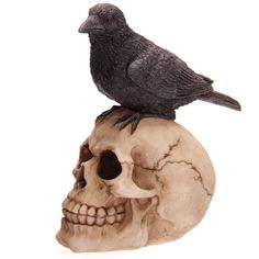 Fantasy Skull with Raven Ornament Looking for something a bit different to give as a gift Then check out our range of novelty skull decorations Made