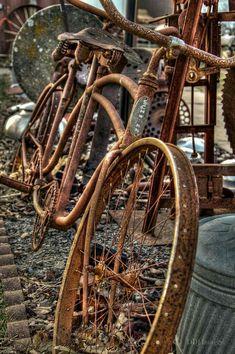 bikeengines-com: Vintage Schwinn rusty tandem bicycle Velo Retro, Velo Vintage, Vintage Bicycles, Old Bicycle, Old Bikes, Tandem Bicycle, Velo Tricycle, Rust Never Sleeps, Pompe A Essence