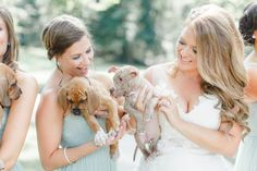 Bridesmaids Hold Rescue Puppies Instead of Flowers. Sarah Mallouk Crain works for Pitties Love Peace, a rescue organization in central Pennsylvania. She and her now husband, Matt Crain, are huge animal lovers and have three rescue dogs of their own, and often foster dogs waiting for their forever homes as well. When they decided to get married, it seemed only fitting that they should include their shared love of dogs on their big day.