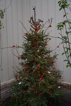 Outdoor lighted tree decorated with poplar branches, faux cherry clusters and feather birds| Dirt Simple