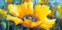Softly Said by Jennifer Bowman yellow poppy acrylic