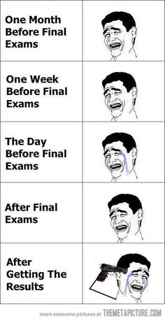 final exams cycle. exactly how i feel!