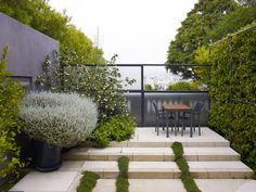 Lutsko Associates Roof garden on a Private Residence in San Francisco, California