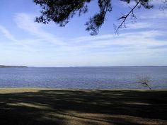 Ross Barnett Reservoir; Brandon, MS