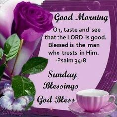 Good Morning Happy Sunday Images, Quotes, GIF, Blessings Weekend - Have a Blessed Sunday to all! Sunday Morning Images, Blessed Sunday Morning, Blessed Sunday Quotes, Happy Sunday Images, Sunday Prayer, Have A Blessed Sunday, Morning Blessings, Morning Quotes, Morning Messages