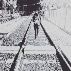 Es decir que quien no tenga porque morir no tiene porque vivir ⚔️🐼 Railroad Tracks, Decir No, Live, Train Tracks