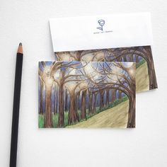 art print card set, watercolor cards, fall party invitations, nature notecard, blank cards with envelopes on Etsy, $10.00