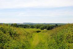Great view on the New Alresford Walk