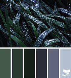Olympic Paints and Stains dew tones, colors palette, green (inspiration) (dark) (macro) Colour Pallette, Colour Schemes, Color Combos, Color Patterns, Designers Gráficos, Pallet Designs, Design Seeds, World Of Color, Color Stories