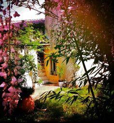 """Régis Cariou - """"Le bout du monde et le fond du jardin contiennent la même quantité de merveilles."""" (Christian Bobin)"""