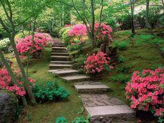 140862d1372486129-garden-wallpaper-garden-wallpaper-pics.jpg 1 600×1 200 pixels