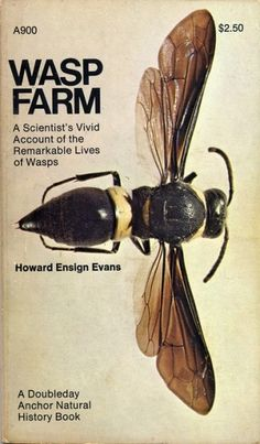Howard Ensign Evans / WASP FARM  / pinned on Toby Designs