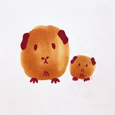 Guinea Pig  Mum & Baby  5x5 Print