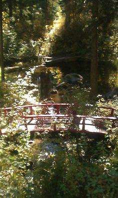 Walking bridge, McCall Idaho