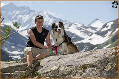 www.dogwalktrail.com hond vakantie Zell Am See, Doge, Husky, Animals, Kaprun, Animales, Animaux, Animal, Animais