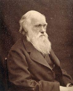 Home of Charles Darwin (Down House)   English Heritage