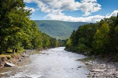 "Not sure how I feel about A-listers turning our beautiful Catskills into a ""hotspot"""