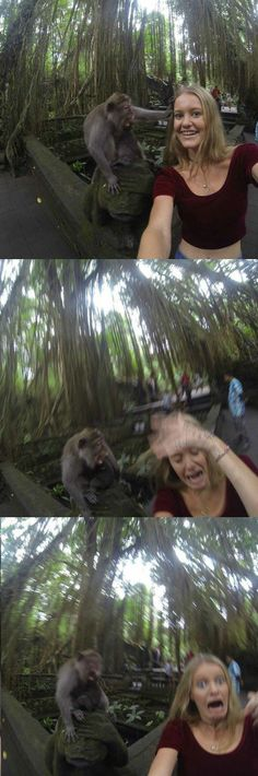 Just imagine that im the girl snd the monkey is life  Treats yougood at first then goes ape on you