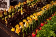 """Schaffer's Genuine Foods created an edible garden for a YouTube event at the Museum of Flying in Santa Monica. The """"earth"""" was made from chopped black olives, breadcrumbs, and puffed wild rice."""