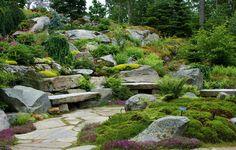 Google Image Result for http://www.gardenvisit.com/assets/madge/coastal_maine_botanic_gardens/600x/coastal_maine_botanic_gardens_600x.jpg