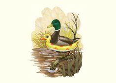 rubber duck duck