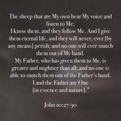 Bible Verse Pictures, Bible Quotes, Savior, Jesus Christ, Scriptures, Bible Verses, John 10 27, Who Is Jesus, Amplified Bible