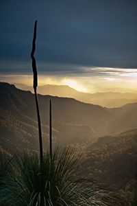 Sunset over the Kerry Valley, Lamington National Park, QLD Australia (photo credit: Michael Snedic)