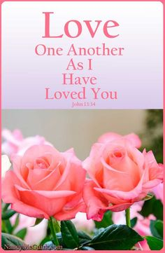 Bible Verses on Love and Loving One Another. Bible Verses About Love, Favorite Bible Verses, Scripture Verses, Bible Verses Quotes, Bible Scriptures, Scripture Images, Biblical Quotes, Word Of Faith, Word Of God