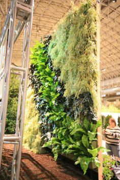 Chicago Flower and Garden Show Indoor Living Wall Vertical Plant Wall, Garden Show, Fake Plants, Vertical Gardens, Indoor, Outdoor Structures, Green Walls, Interior, Flowers