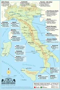 Italy Wine Regions Map - designed by Nicks Wine Merchants in Australia. This Italy Map shows type of wine produced in each region including the Piedmont region where Turin is located. Pinot Noir, Wine Names, Chateauneuf Du Pape, Wine Education, Wine Guide, Regions Of Italy, Wine Wednesday, Learning Italian, Italian Wine