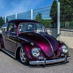 #Clube do Fusca VW
