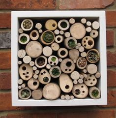 How to Design a Bug Hotel to Attract Beneficial Insects and Bees