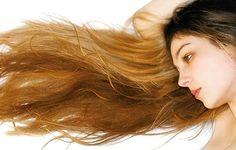 einfach  Shampoo zum selber machen - Lindenblüten Shampoo für trockenes Haar