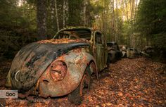 Abandoned car Cemetary by ditteiversen #fadighanemmd