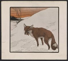 Citation: Reproduction of a Paul Bransom drawing of a fox, 195-?. Paul Bransom papers, Archives of American Art, Smithsonian Institution.