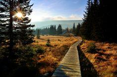 Karkonosze mountains, Poland