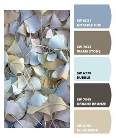 Paint colors from Chip It! by Sherwin-Williams....our hallway is the beige...maybe one of these others for the living room dinning room by cassandragoddess