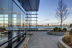 Image 18 of 28 from gallery of Spaulding Hospital / Perkins+Will. Photograph by Anton Grassl/Esto Anton, Rehabilitation Center Architecture, Hospital Architecture, Boston Skyline, Hospital Design, Reclaimed Timber, Medical Center, Landscape Design, Facade
