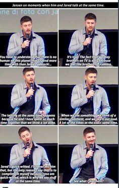 Jensen on moments when he and Jared speak at the same time. Jensen Ackles, Jensen And Misha, Danneel Ackles, Supernatural Convention, Supernatural Tv Show, Supernatural Pictures, Supernatural Quotes, Jared Padalecki, Misha Collins
